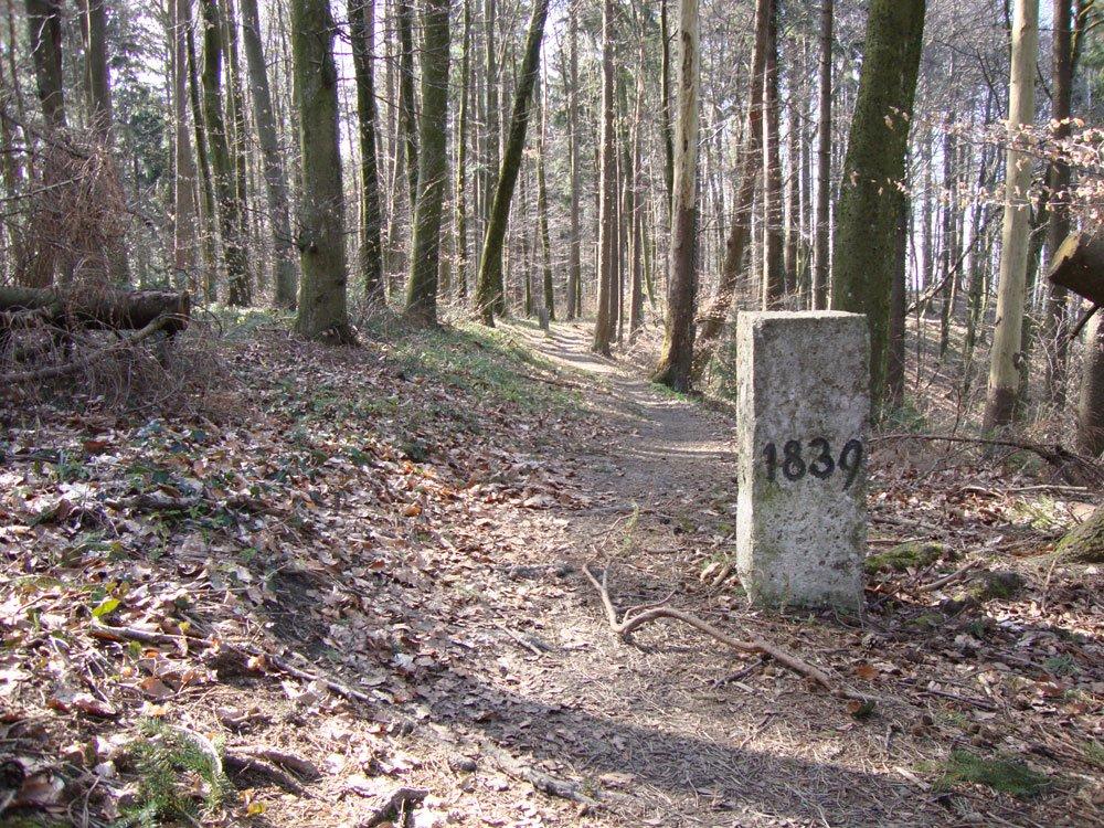 Unsere Stollen müssen nur wenige Meter über Kiesstrassen rollen ...